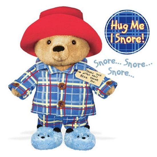 Picture of PJ Time Paddington Bear