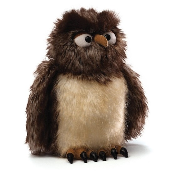 """Picture of """"Zooter"""" the Owl"""