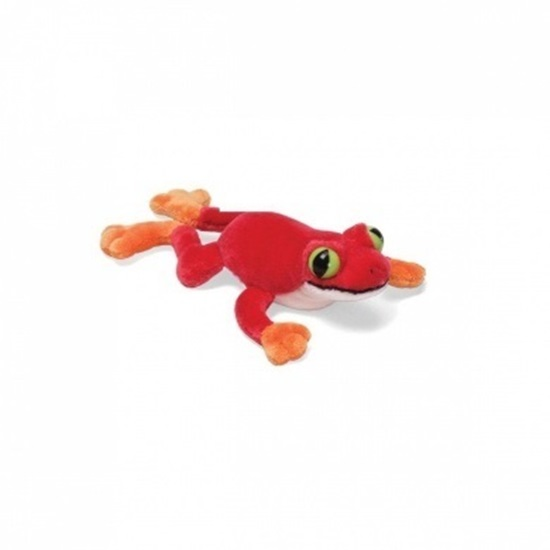 """Picture of """"Leggins"""" Tree Frog - Red"""