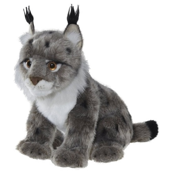 Picture of Lynx